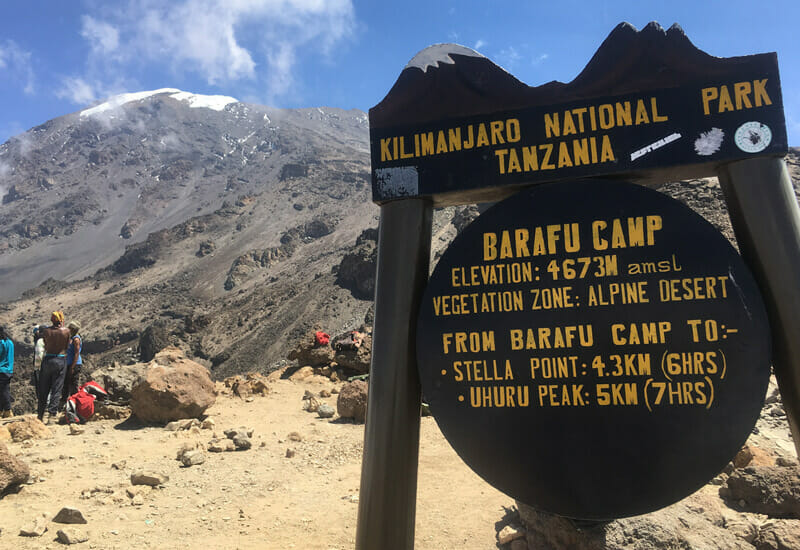 Northern Circuit Route 11 Days Climbing Mount Kilimanjaro, Tanzania