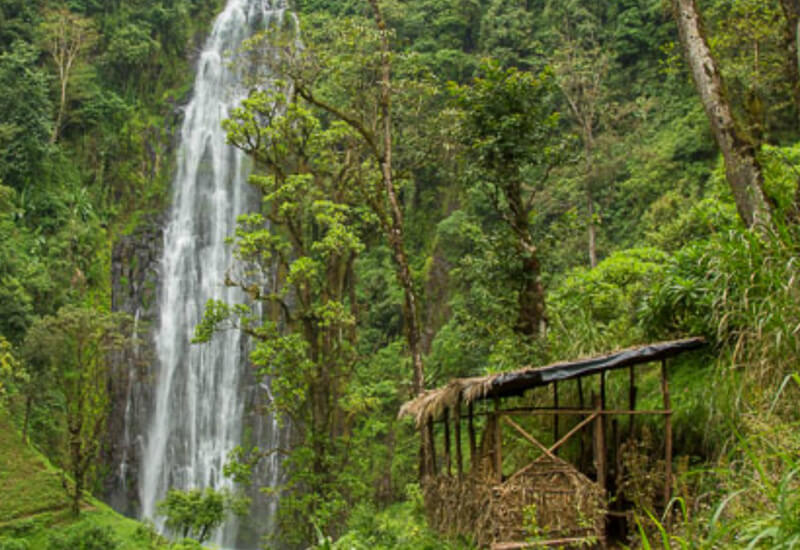 Materuni Coffee and Waterfalls Tour 1 Day