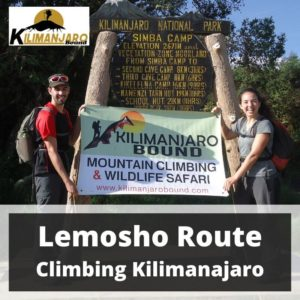 Lemosho Route Trekking Mount Kilimanjaro 2 September to 10 September 2020