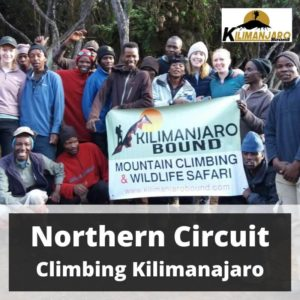 Northern Circuit Route Climbing Kilimanjaro 15 October to 25 October 2020