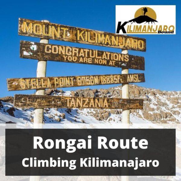 Rongai Route Trekking Kilimanjaro 24 April to 1 May 2020